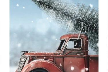 ¿Por qué aumentan en más de un 50% las bajas de vehículos en el mes de diciembre?
